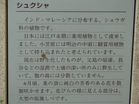 S0807shuku