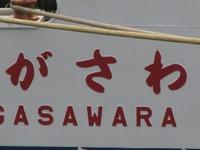 S1013gasawa
