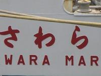 S1013sawara