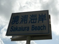 S1116saka