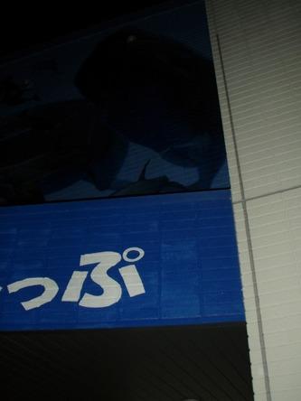 S1224tsupu