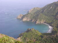Hatuneura1