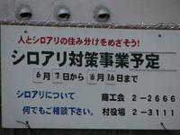 S0531shiro