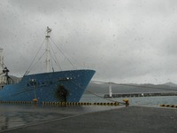 S1226kyosho